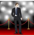 elegant man in suit on red carpet vector image