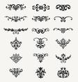 Calligraphic Decorative Design Elements Vintage Ve vector image
