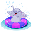 Summer fun elephant vector image