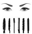Set of mascara and eyes vector image