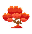 red tree bonsai miniature traditional japanese vector image