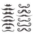 Mustache Silhouette vector image