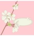 Apple blossom frame background vector image vector image