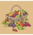 Fruits Basket In Woodcut Style vector image