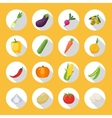 Vegetables Colored Isolated Icon Flat Set vector image