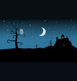 Night landscape with spooky castle and owl on vector image