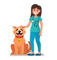 veterinarian doctor examining dog vector image
