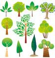 Tree samples vector image