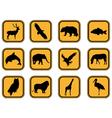 Animal icons set vector image