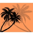 palm trees with silhouettes of leaves vector image