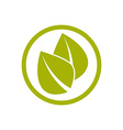 Two green leaves icon vector image