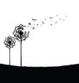 dandelion in nature vector image