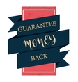 Guarantee money back black label vintage style vector image