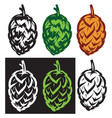 stylish set of hop cones vector image
