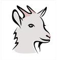 goat portrait vector image