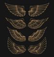 Set of golden wings on dark background vector image