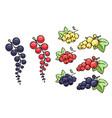 fruitsshutter2 vector image