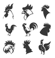 Set of the roosters icons Chicken heads Design vector image