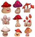 Fresh mushroom with facial expressions vector image vector image