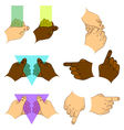 Set hands vector image