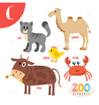 Letter C Cute animals Funny cartoon animals in  vector image