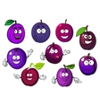Cartoon fresh purple plum fruits vector image