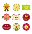 Natural Jam Colorful Labels vector image