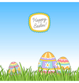 Easter grass eggs vector image