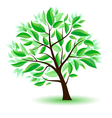 stylized tree with green leaves vector image