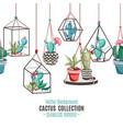 cacti flower seamless border vector image