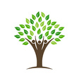People group tree logo vector image