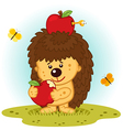 hedgehog with apples vector image