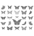 Butterflies graphic silhouettes vector image