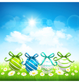 Natural background with Easter eggs vector image