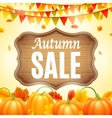 Autumn Sale Anouncement vector image