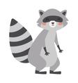 Funny raccoon vector image