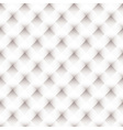 White latice background vector image vector image