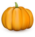 orange halloween 3d pumpkin on white vector image