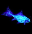 Fair Fish Blue 01 vector image