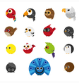 Cute Animals Set of Birds icon vector image