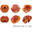 woman hair in red vector image
