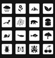 nature items icons set squares vector image