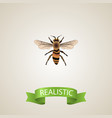 realistic housefly element of vector image