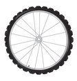 Wheel of the bicycle vector image
