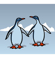 Two penguins vector image vector image