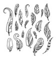 bird feathers hand drawing indian elements set vector image