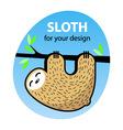 Cute cartoon sloth vector image