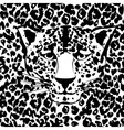 Seamless animal fur pattern vector image