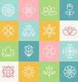 ecology and organic logos vector image