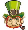 leprechauns head vector image